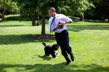 President Obama and his presidential pup Bo