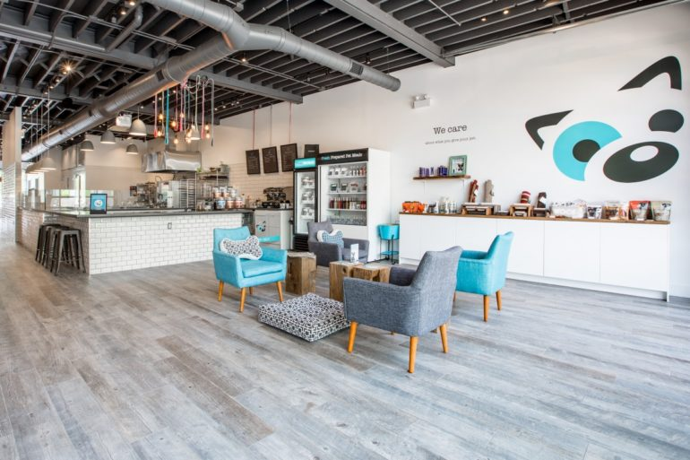 Our Favorite Dog Friendly Stores in Toronto – AngusPost